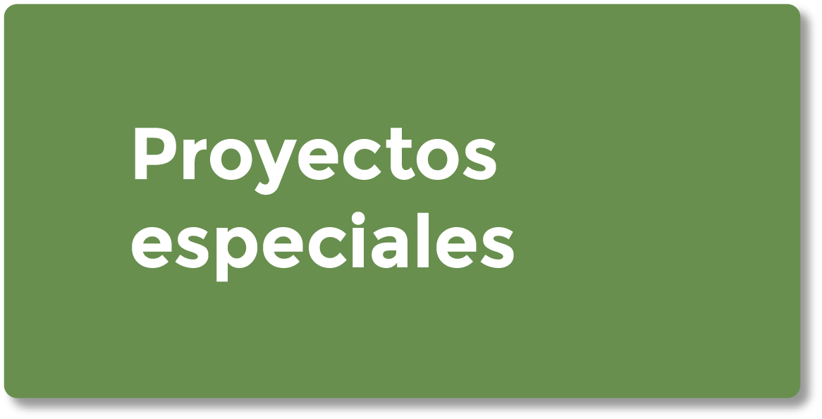 Proyectos Especiales Home